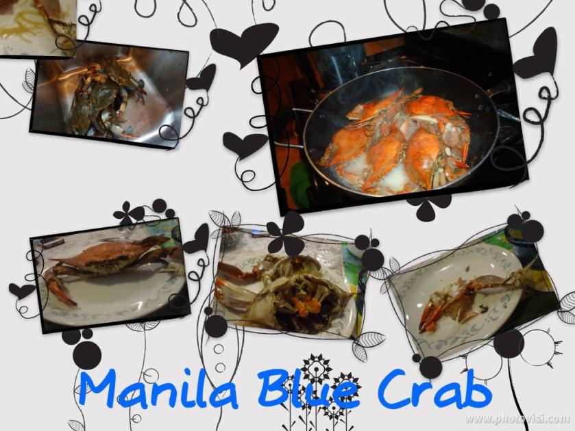 Blue Crab Blog